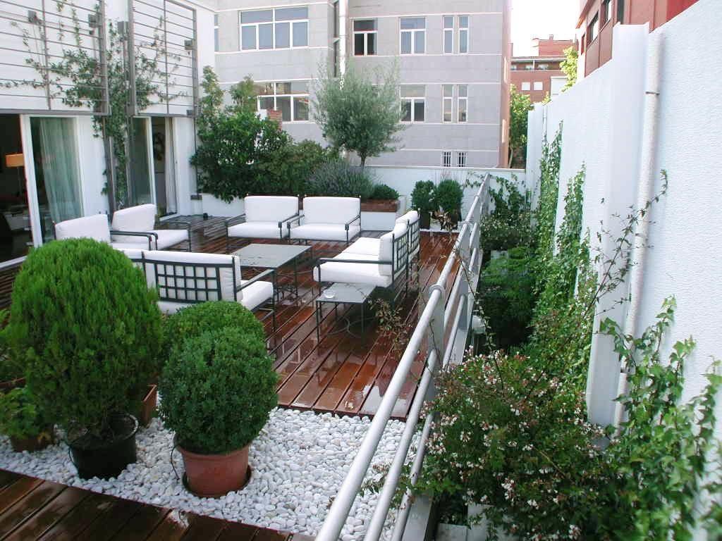 Roof Garden House T Terraza Casa Terrazas Paisajismo