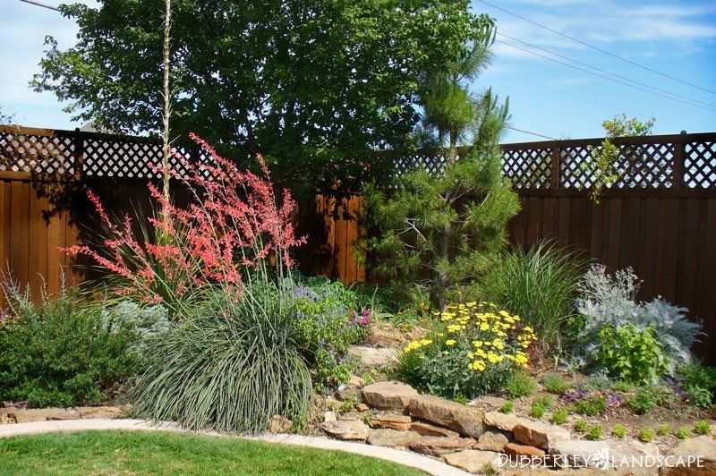 Texas Native Landscapes Gallery - Dubberley Landscape. Love this for the  corner. - Texas Native Landscapes Gallery Gardening & Landscaping- I