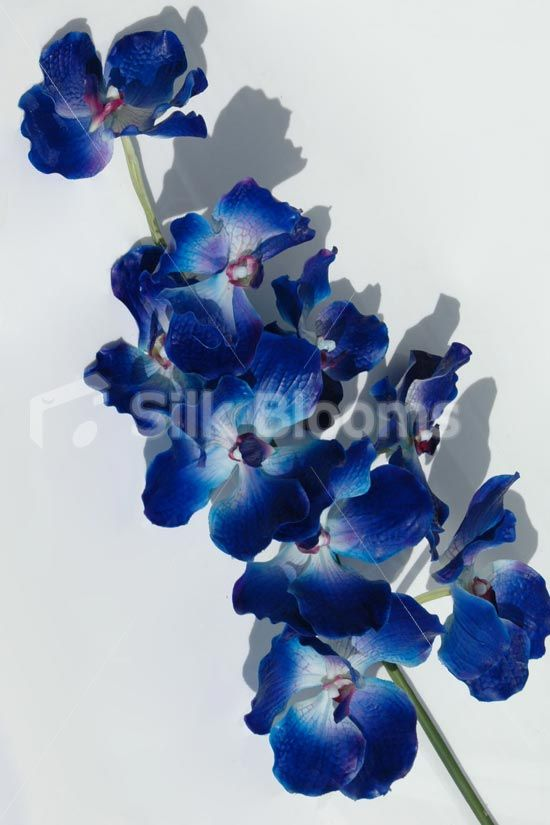 Artificial Midnight Blue Orchids Real Touch Blue Vanda Orchids Artificial Midnight Blue Orchids Vanda Orchids Dyed Orchid Blue Orchids Vanda Orchids Orchids
