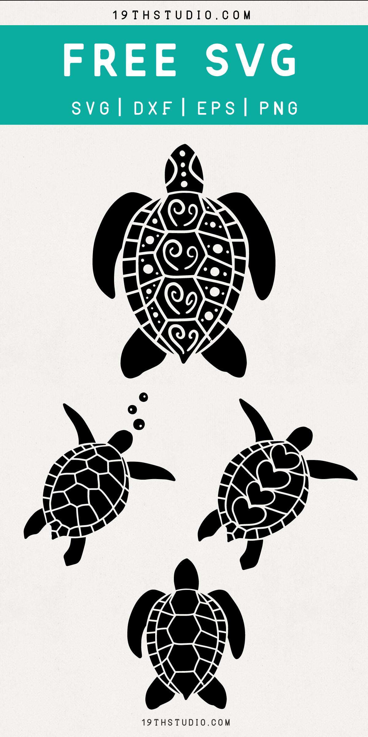 Free Sea Turtles Svg Cricut Designs Pinterest