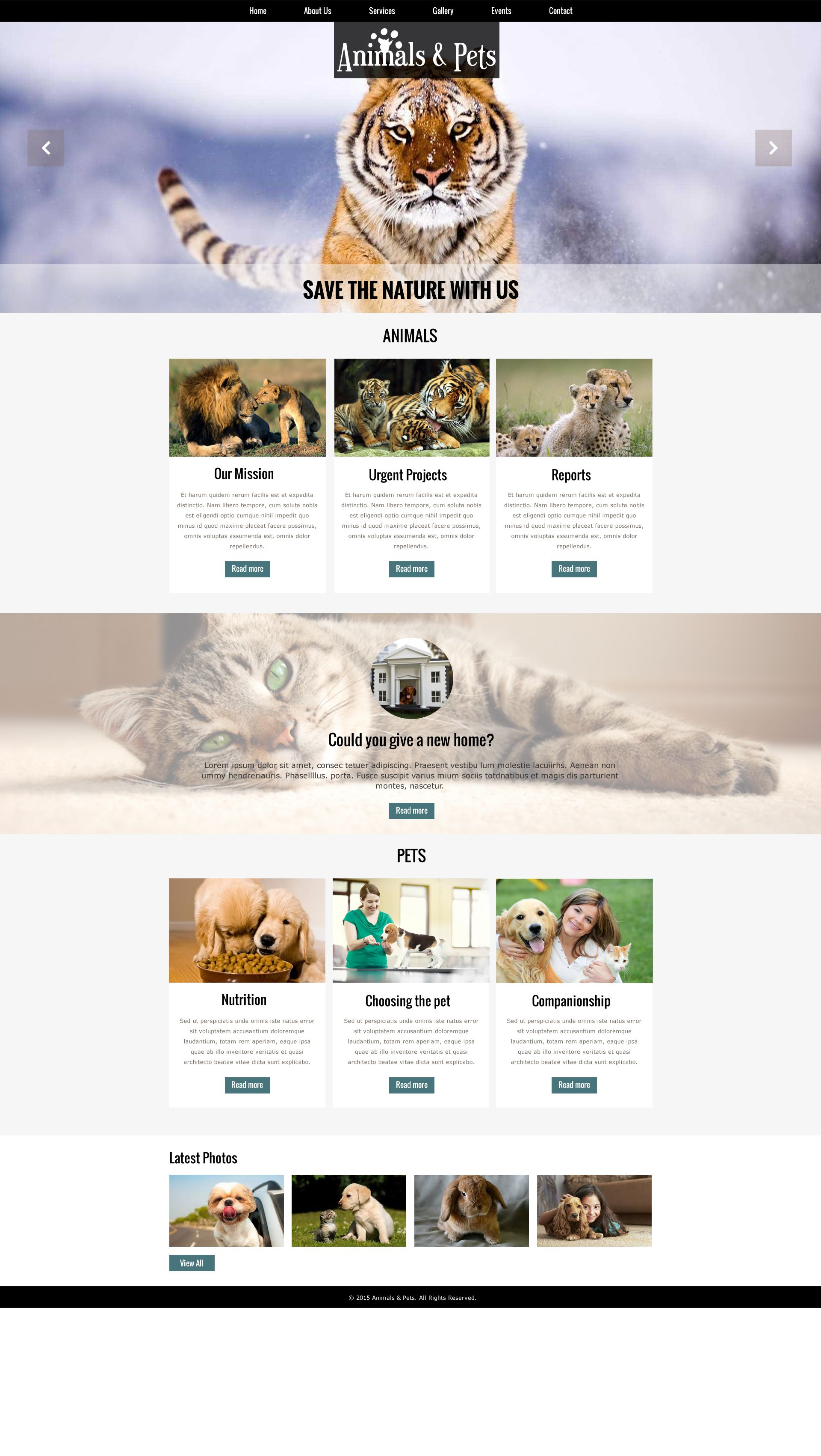 Sells Animal Pets Template One Of The Best Website Builder In - Design your own website template