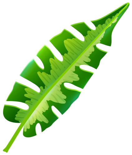 Tropical Leaf Png Clip Art Giant Paper Flowers Template Leaf Collage Tropical Leaves