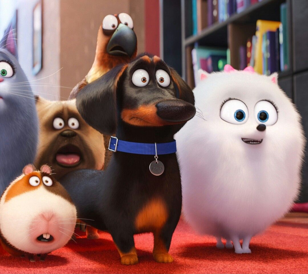Pin By Daisy Gillespie Ku4life On Zedge Wallpapers Pets Movie