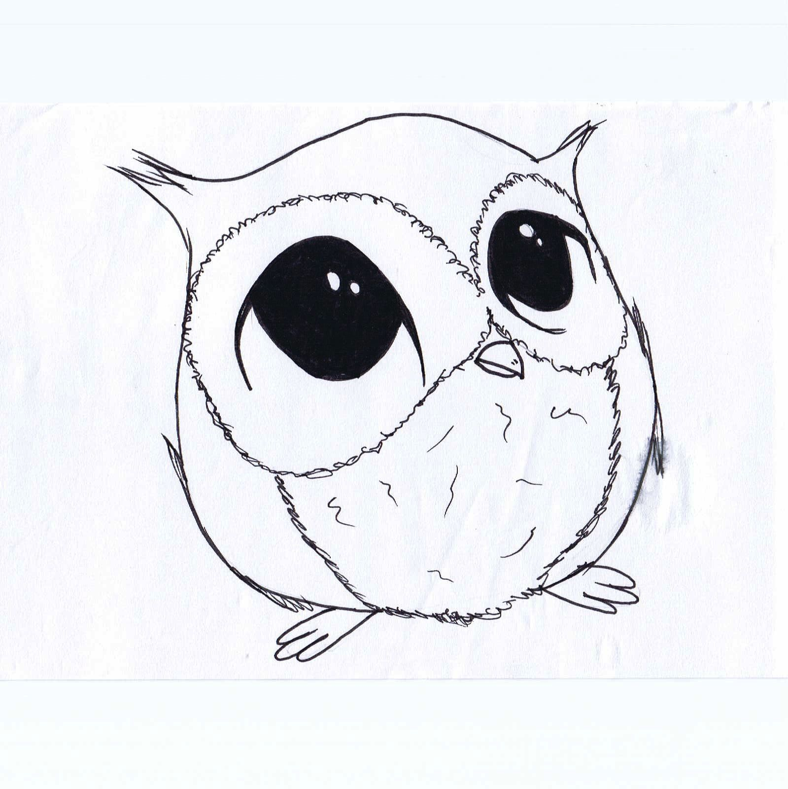 Cute black drawings of animals go back images for for Draw the owl