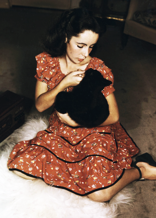 Elizabeth Taylor with a with small black kitten, 1944