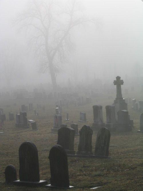 foggy cemetery, location? | Graveyard Junky | Cemetery art, Cemetery