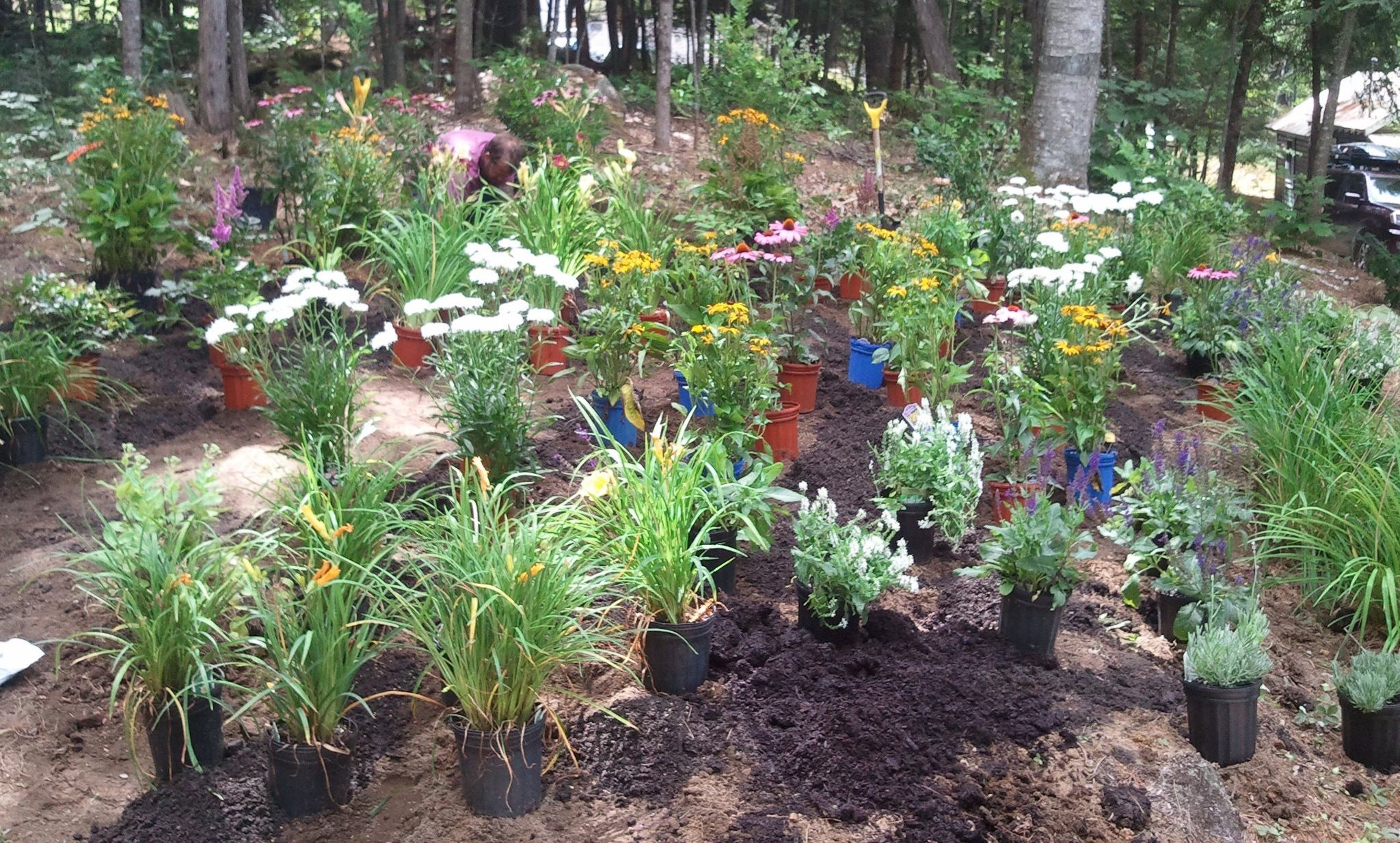 Time to think about your flower gardens!