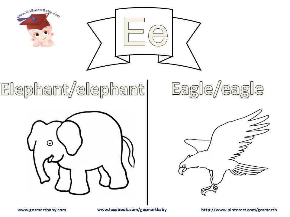 In this worksheet, letter E, an Elephant and Eagle are two things