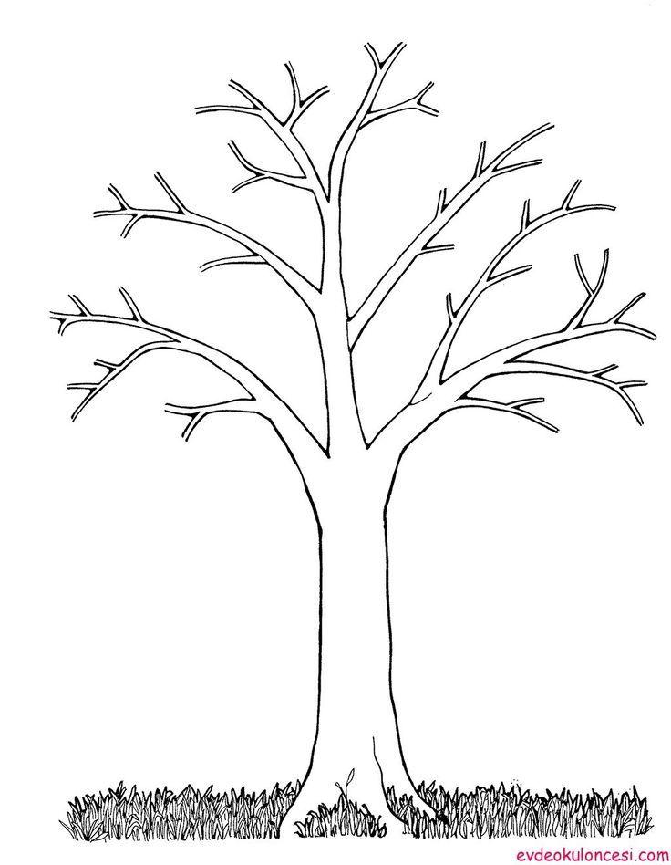 Ağaç Resmi Boyama Okul öncesi Ile Ilgili Görsel Sonucu Sanat