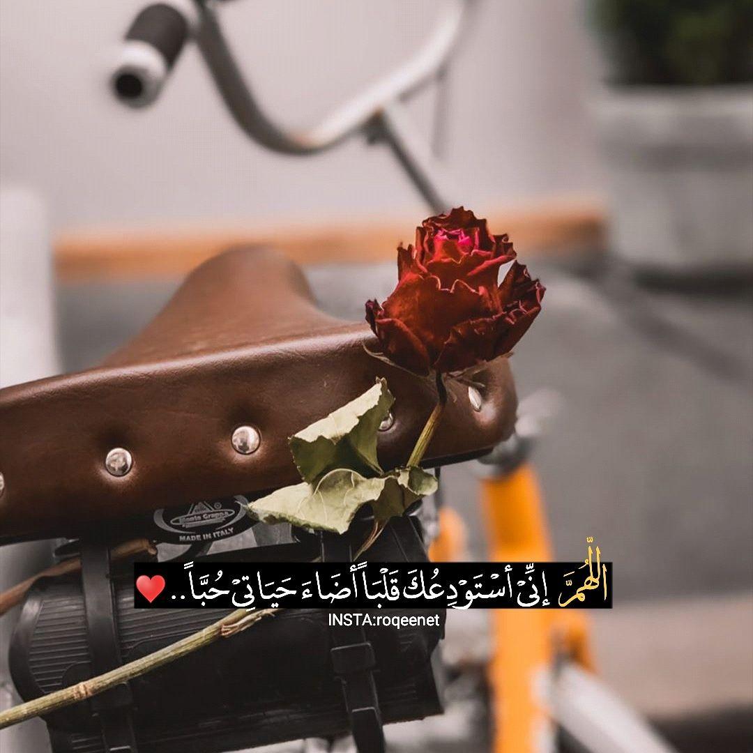 اللهم اني استودعك قلبا اضاء حياتي ح با Flowers Insta Made Soso