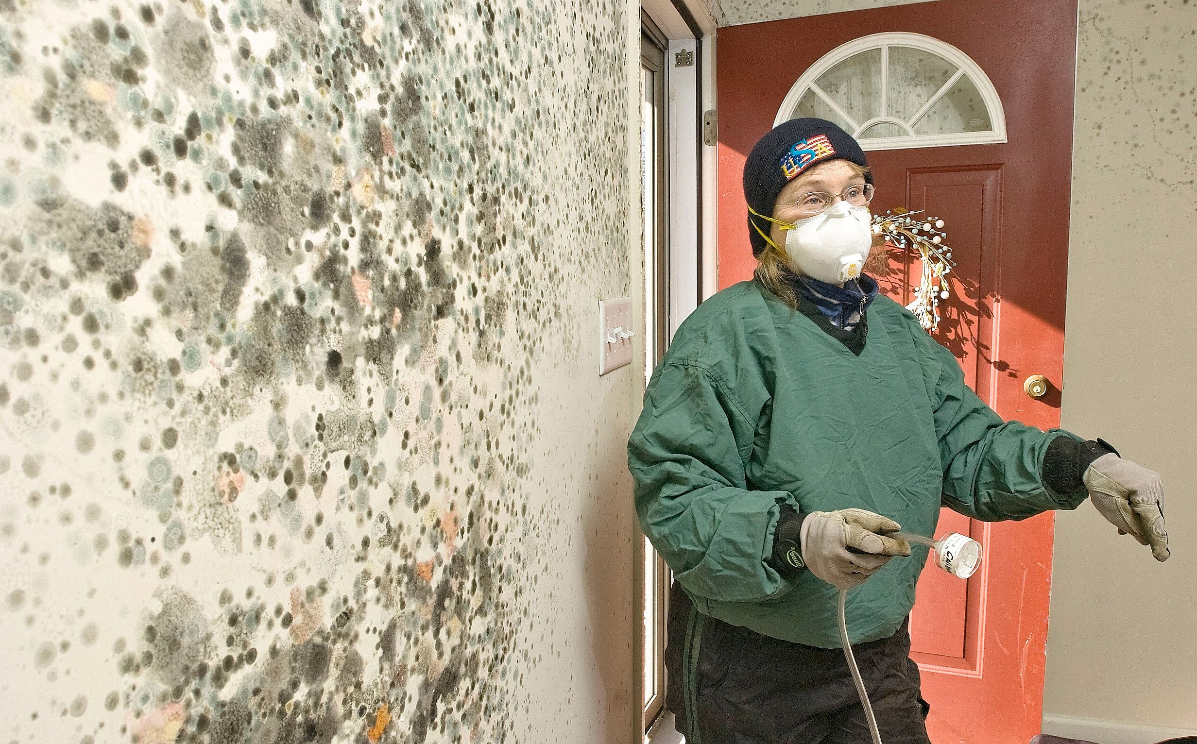 If You Cannot Handle Too Much Mold Infestation In Your House It Is