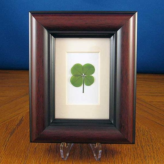 9512b74dac0 Mahogany Frame with a Real Genuine Four Leaf Clover - MH-4F