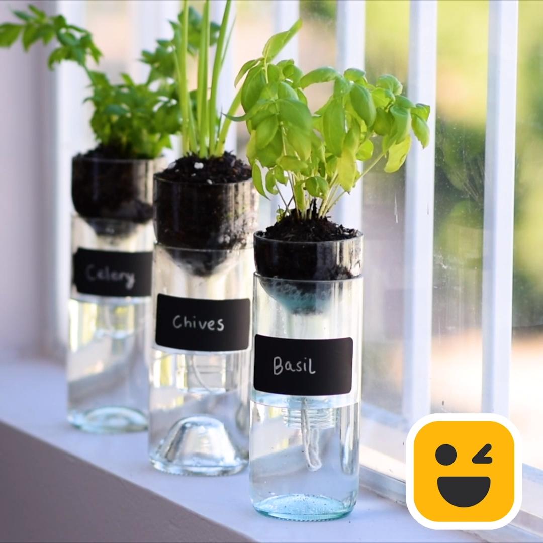 Photo of Wine Bottle Planter