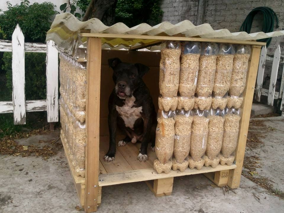 Dog Houses For Multiple Dogs Extra Large Dog Houses Two Dogs Jpg