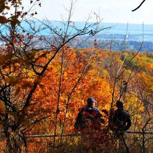 Your resource for hiking locations in Burlington and the surrounding area including safety tips, information about the Bruce Trail and Niagara Escarpment.