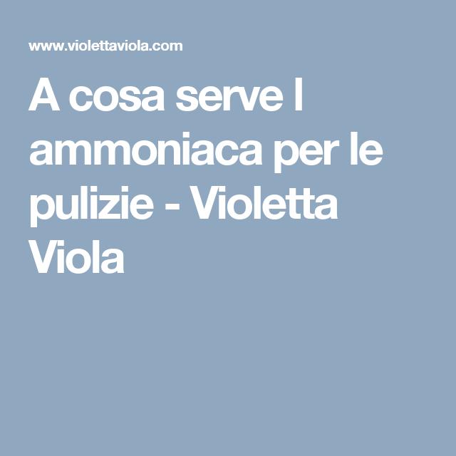 A Cosa Serve L Ammoniaca Per Le Pulizie Violetta Viola