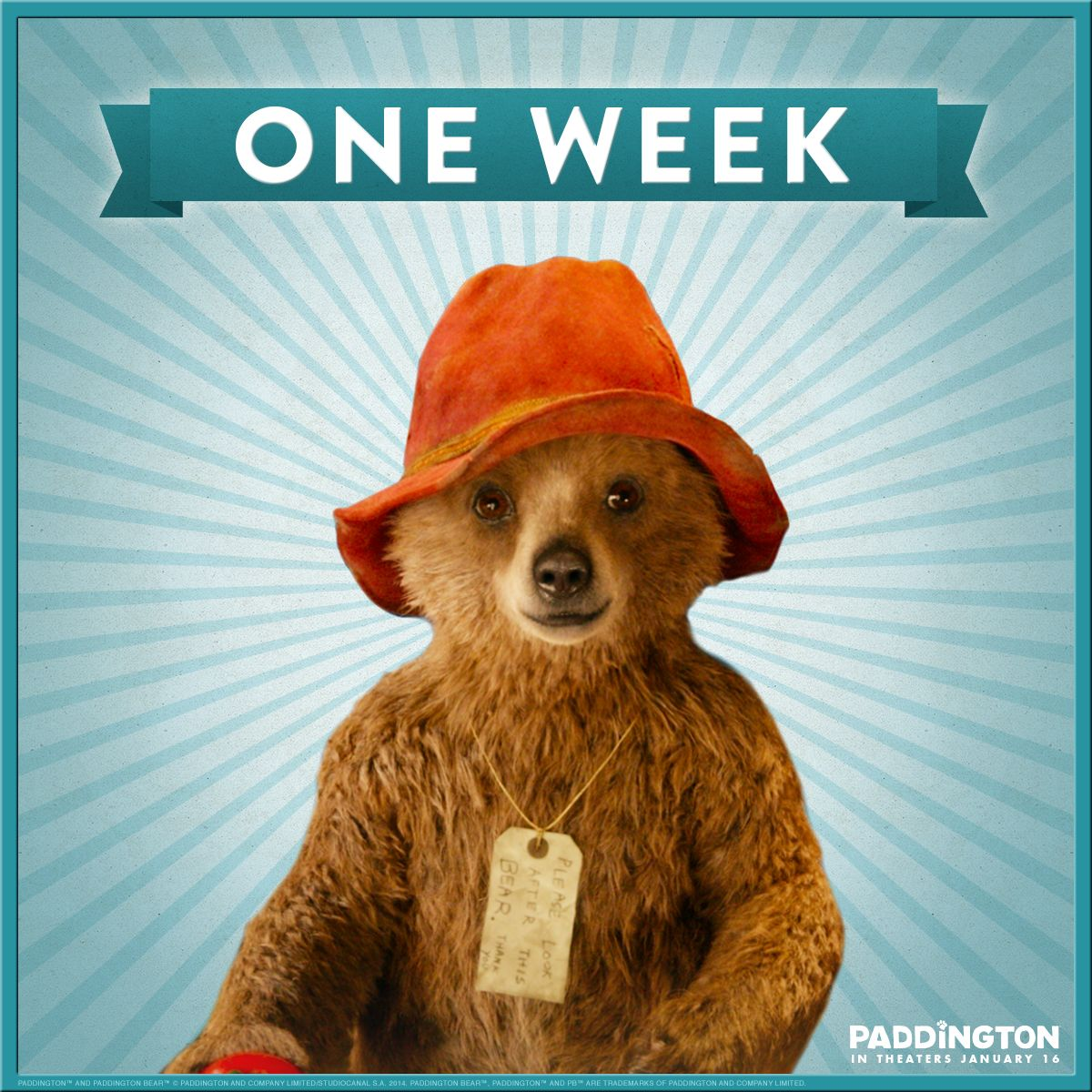 In One Week A Little Bear Is Going To Make A Big Splash Paddington