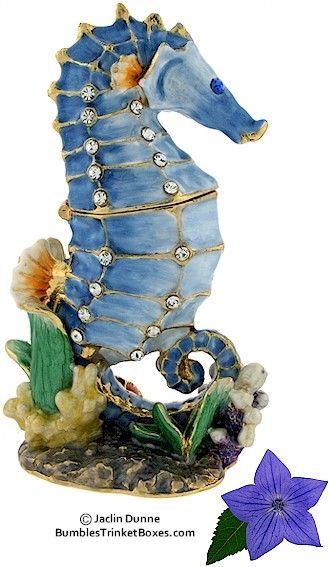 Trinket Box: Blue Seahorse