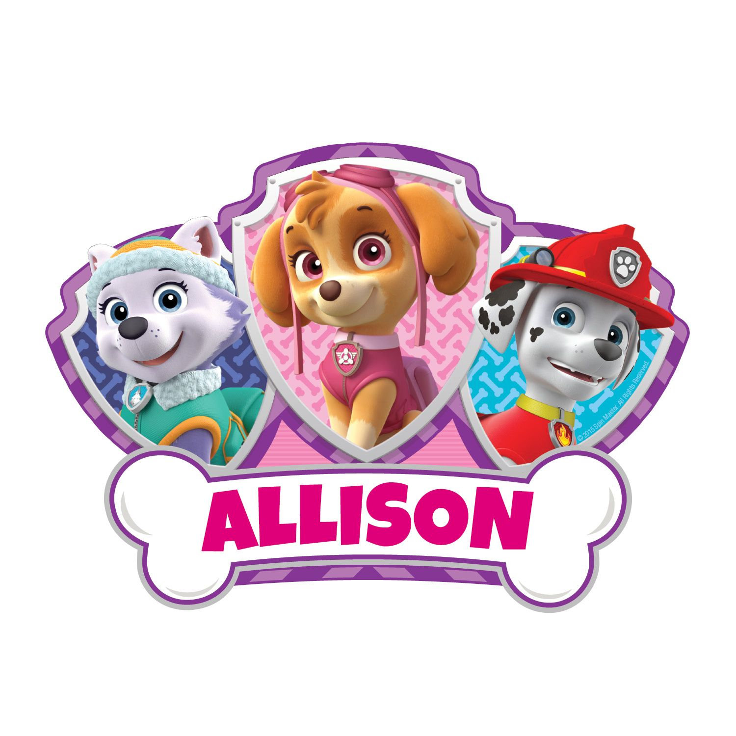 Paw Patrol Skye and Pups Easy-Move Canvas Decal | Tv\'s Toy Box ...