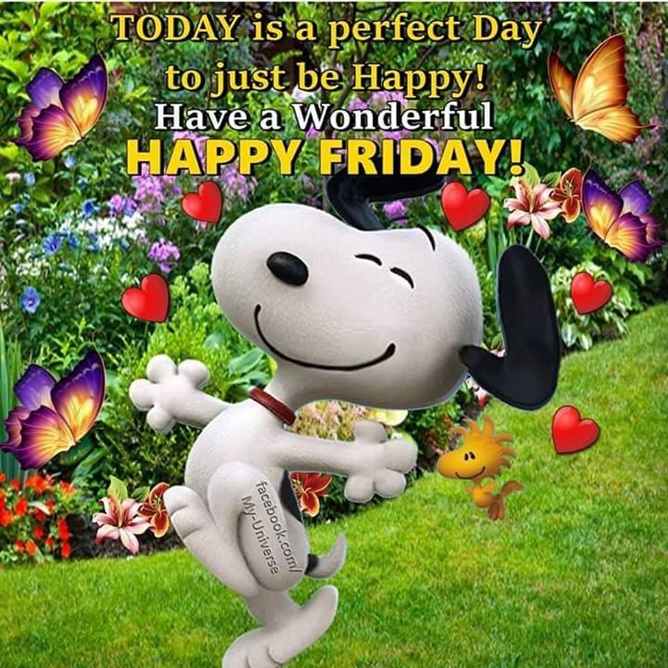 Good Morning Happy Friday Have A Fabulous And Blessed Day Snoopy Friday Good Morning Happy Friday Happy Friday Morning