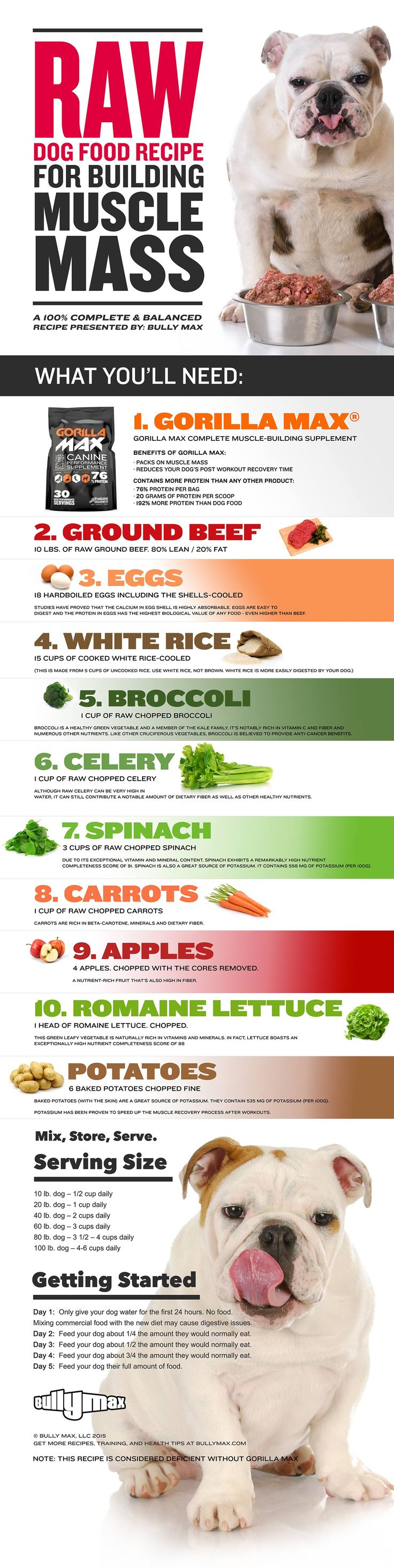 Raw dog food recipe for building muscle family pinterest raw video and infographic this raw dog food recipe is guaranteed to pack on pounds of muscle mass contains nearly 40 protein forumfinder Gallery