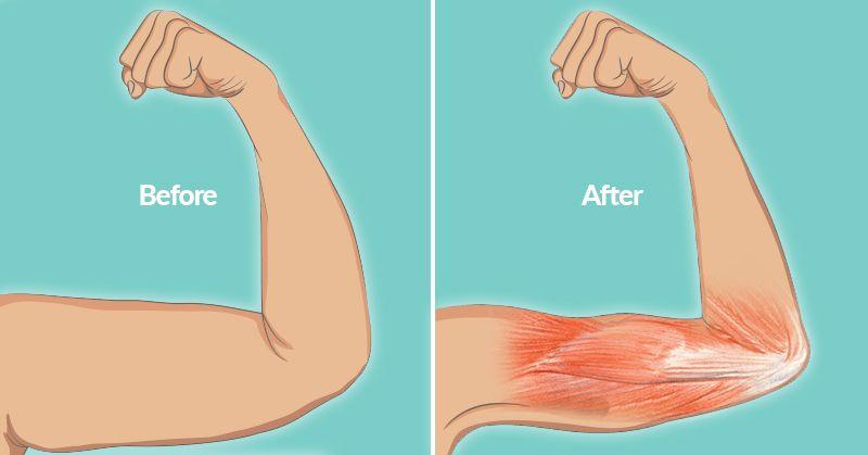 Strength circuit fat loss