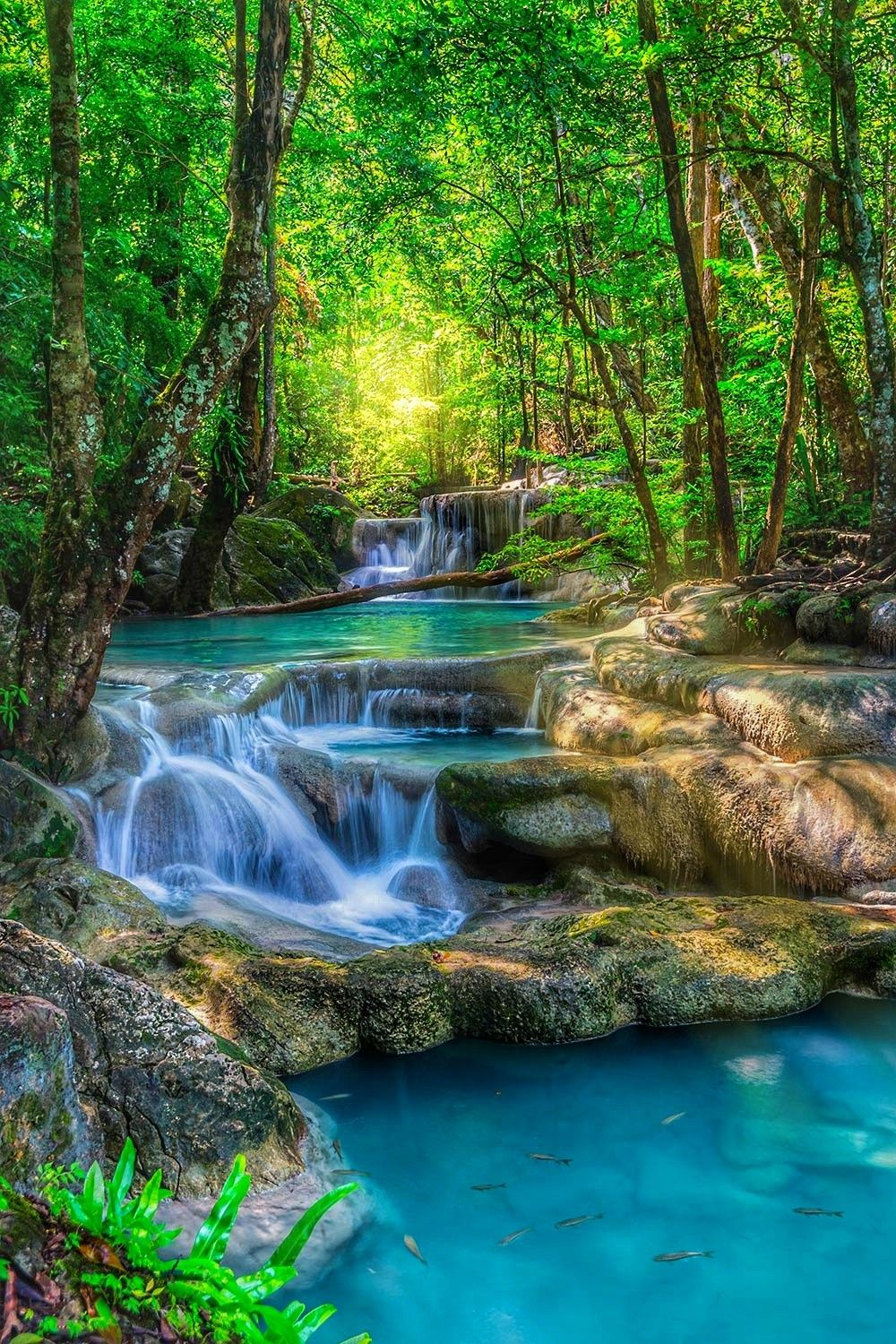 Pin By Hannah On The Creation Of Allah The Ineffable Waterfall Wallpaper Nature Photography Beautiful Nature