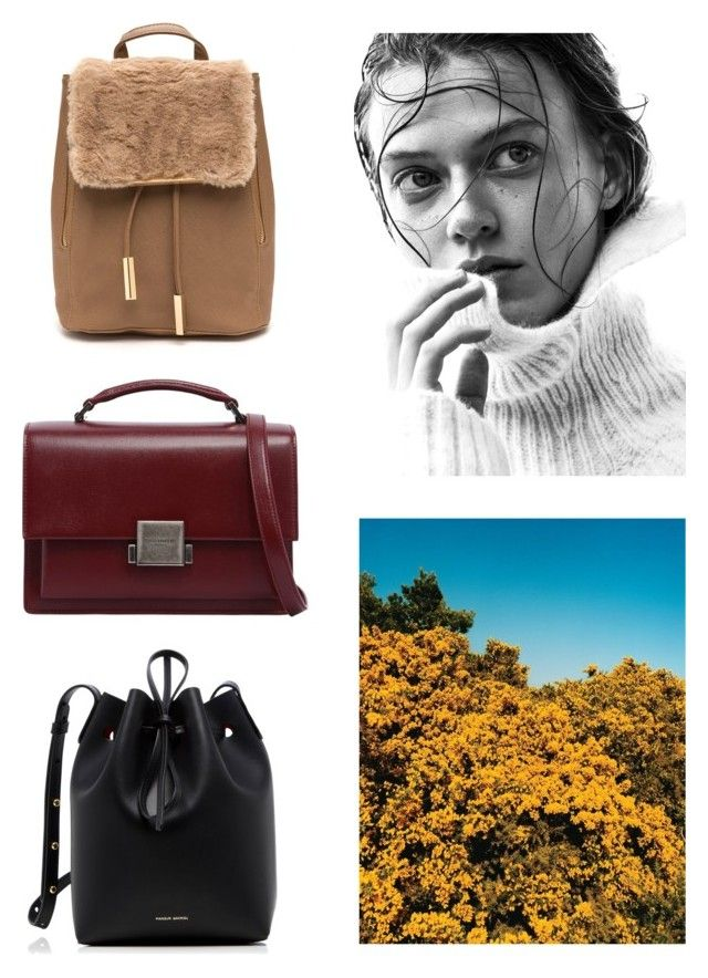 """""""Untitled #125"""" by chichateau ❤ liked on Polyvore featuring Angelo, Yves Saint Laurent and Mansur Gavriel"""