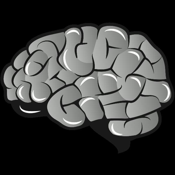 Brain 1589810756 Free Clip Art Clip Art Free Vector Images