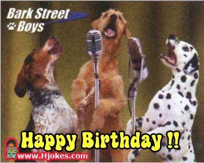 Bark Street Boys Happy Birthday Happy Birthday Wishes