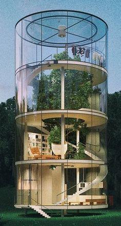 Das röhrenförmige Ferienhaus aus Glas umgibt einen ausgewachsenen Baum