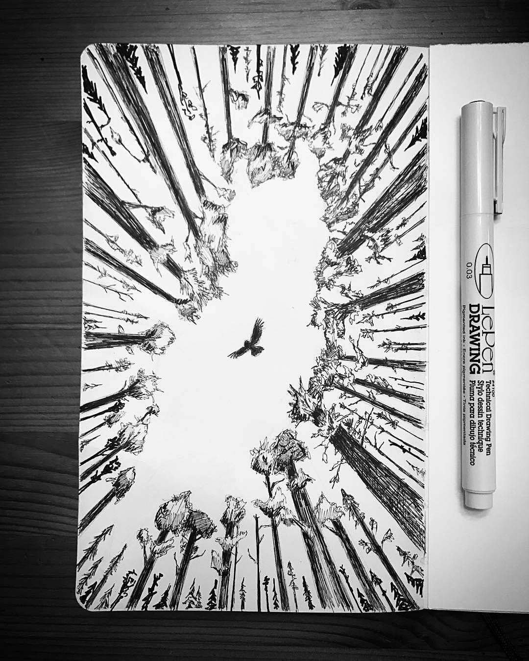 Heres a unique penandink nature sketch by kenny eicher sketchy mcgee of an owl soaring above the treetops a flying owl would make for an interesting