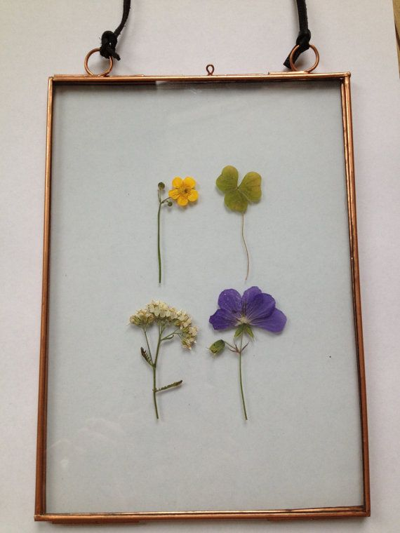 Copper Frame with Pressed Flowers 15 x 21 CM. | Pretty Things ...