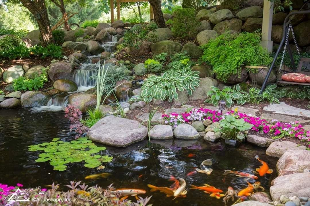 Pin By Water Garden Pond Supplies On Ecosystem Ponds 400 x 300