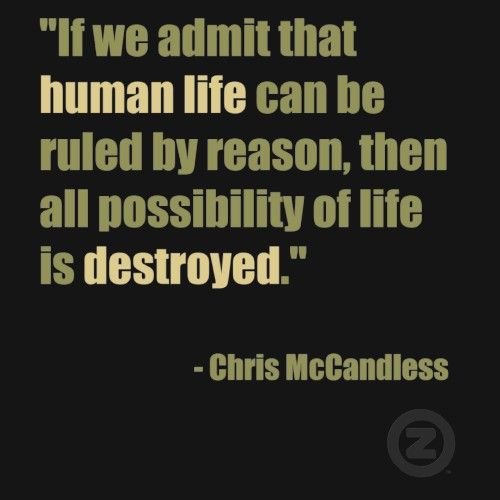 Chris Mccandless Quotes Adorable Chris McCandless Quote ❣️Quotes Wisdom And Truth