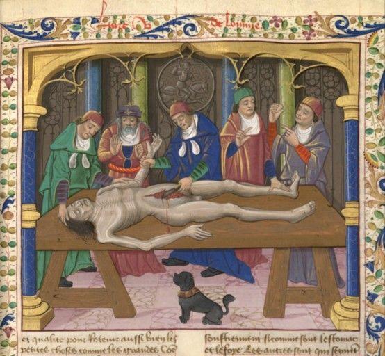 Resultado de imagen de liber de proprietatibus rerum by bartholomaeus anglicus anatomia