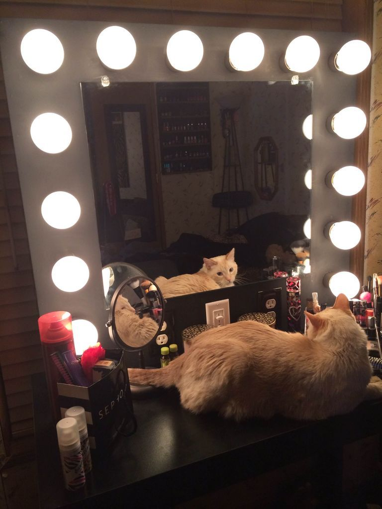 DIY Lighted Makeup Mirror