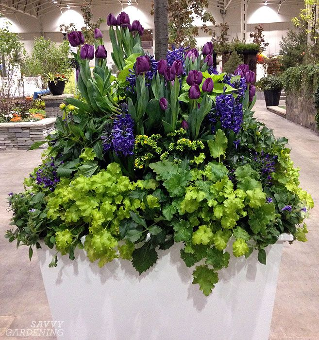 Diy garden ideas from canada blooms clever containers we love this spring container with tulips hyacinth and heuchera mightylinksfo