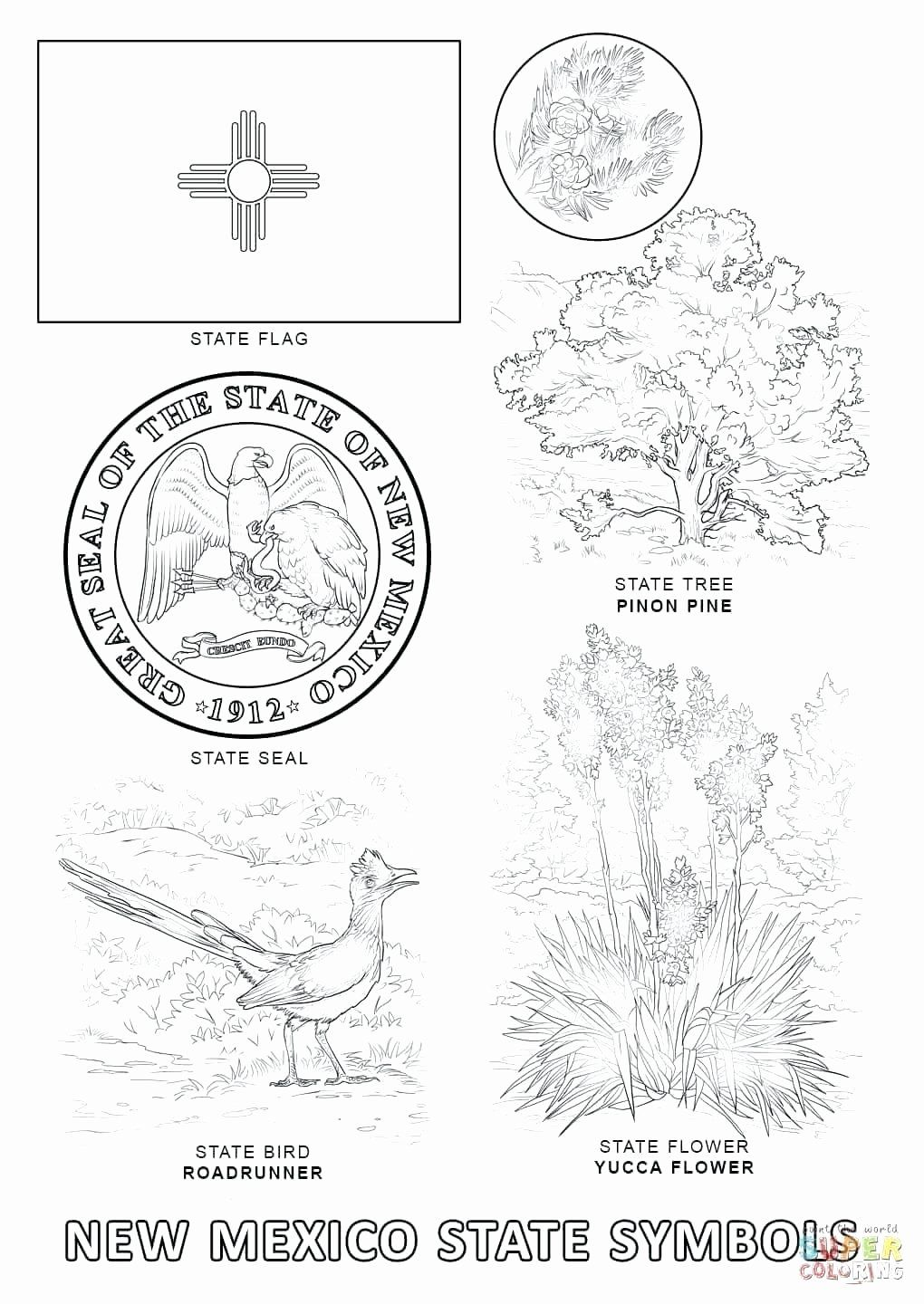 Washington State Flower Coloring Page Beautiful Delaware