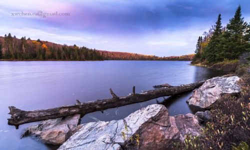 Algonquin park in the Fall by Simon Chen