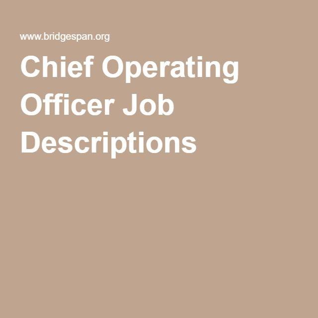 Chief Operating Officer Job Descriptions Professional Realm - executive director job description