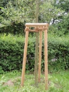 Tree Tripple Staking And Rope Support Peter Donegan Landscaping Dublin Tree Support Tree Stakes Trees To Plant