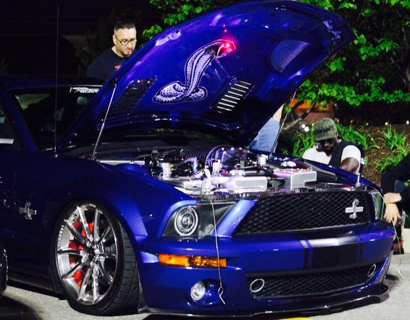 Instagram dam_shelbyss Mustang club, Mustang cars
