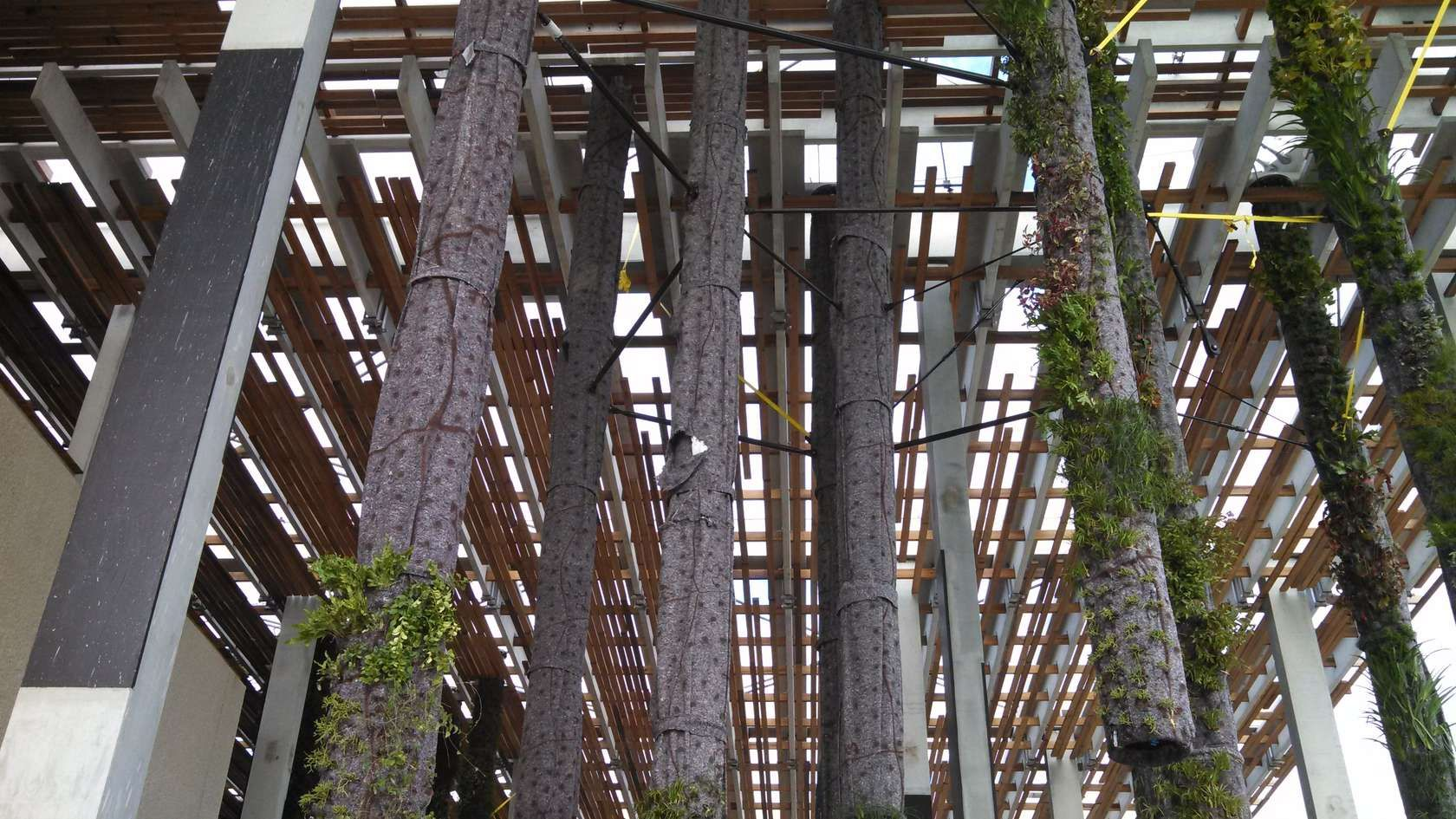 JTI designed and fabricated a complete superstructure for the Pérez Art Museum Miami Hanging Gardens. The tubes are custom 18in diameter fiberglass tubes.