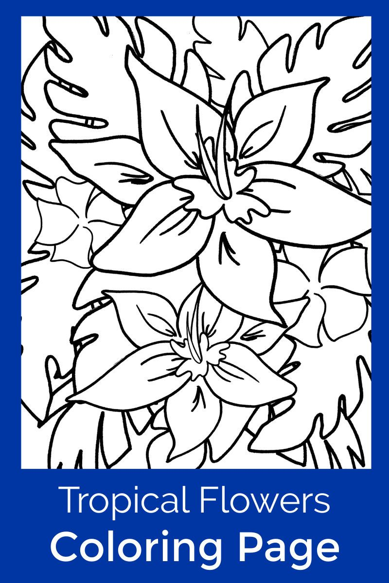 Hawaiian Tropical Flowers Coloring Page in 2020 | Tropical ...