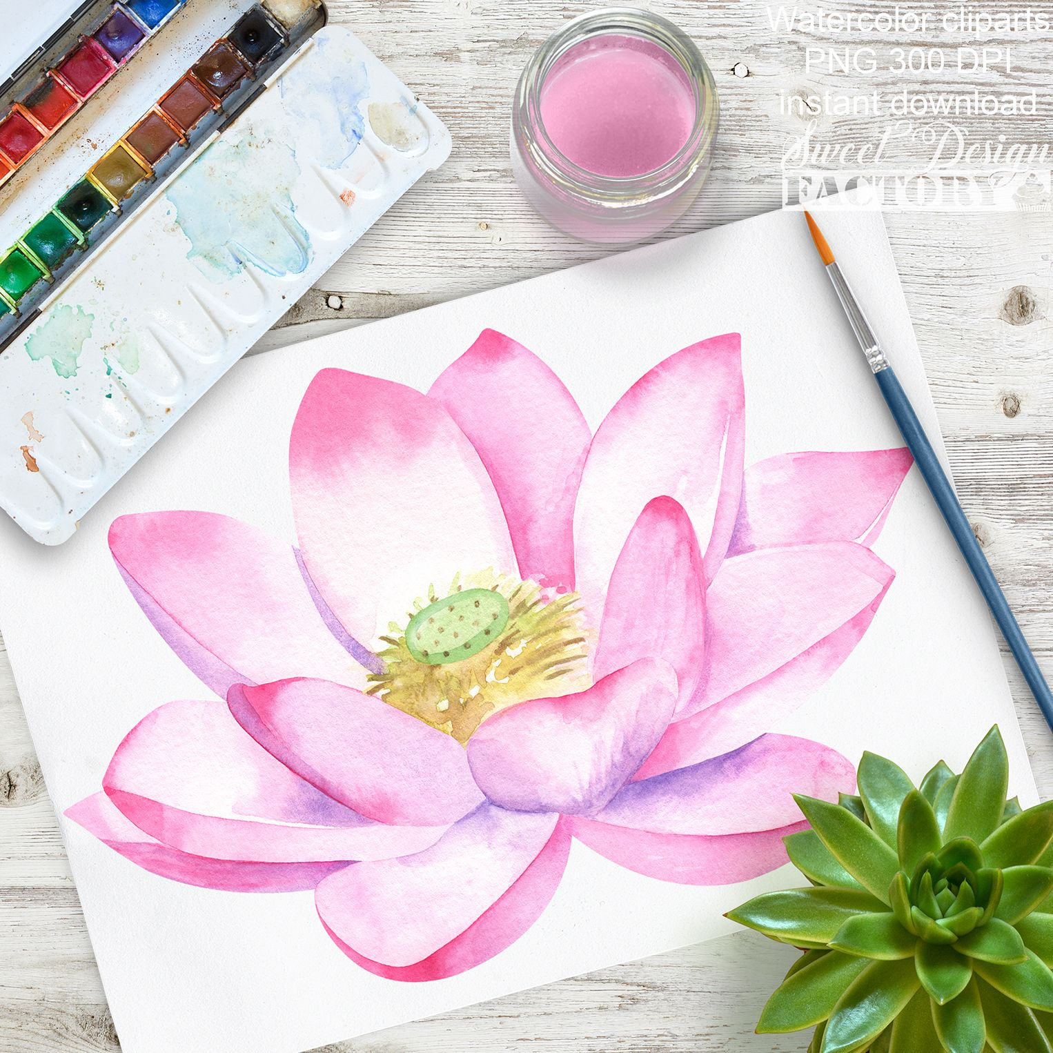Clipart De Lotus A L Aquarelle Nenuphar Aquarelle Printemps