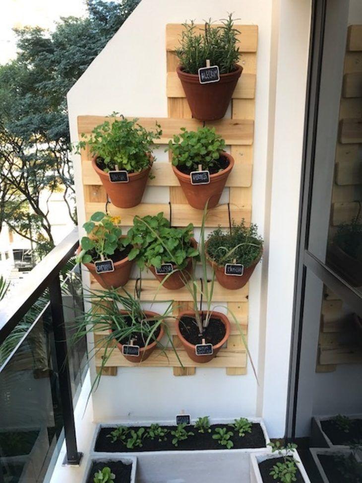 horta em apartamento como fazer o que plantar passo a on indoor herb garden diy apartments living walls id=62436