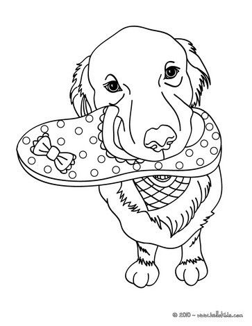 Labrador Retriever Coloring Page Free Printable Coloring Pages