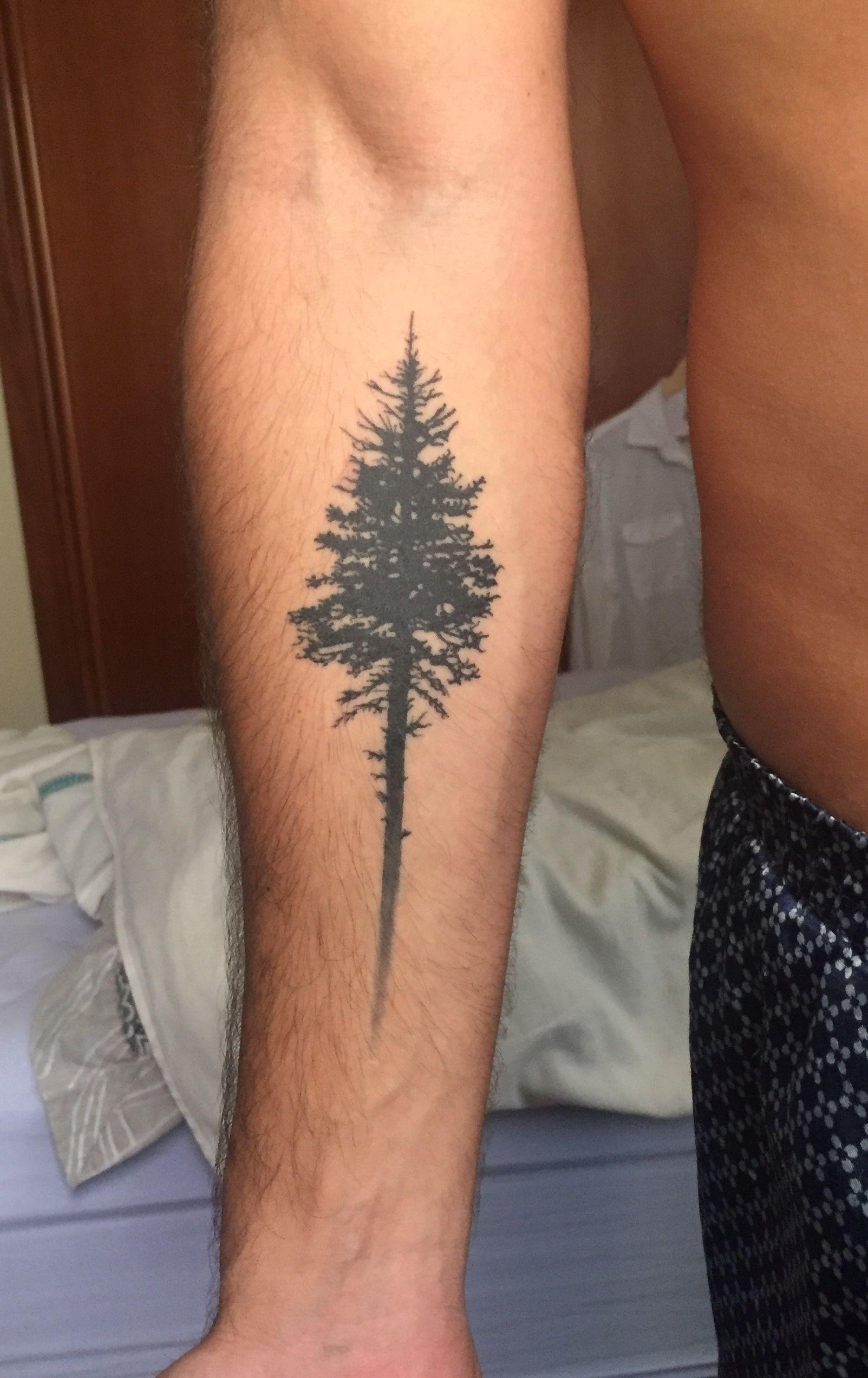 Pine tree tattoo
