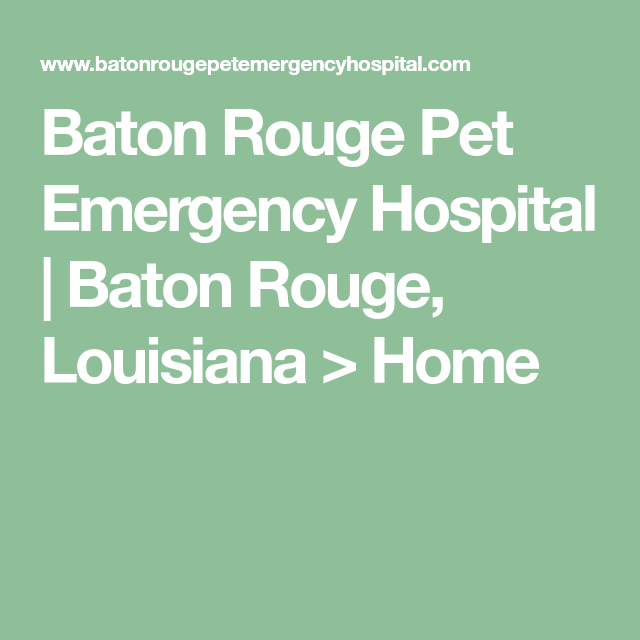 Baton Rouge Pet Emergency Hospital Baton Rouge Louisiana Home